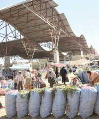 Mercado campesino del sur