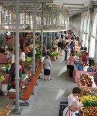 Mercado Campesino y Modelo del Norte